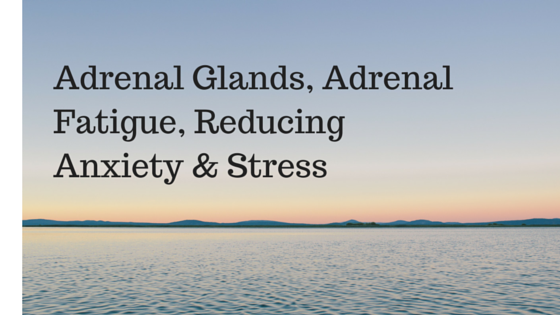 Adrenal Glands, Adrenal Fatigue, Reducing Anxiety & Stress