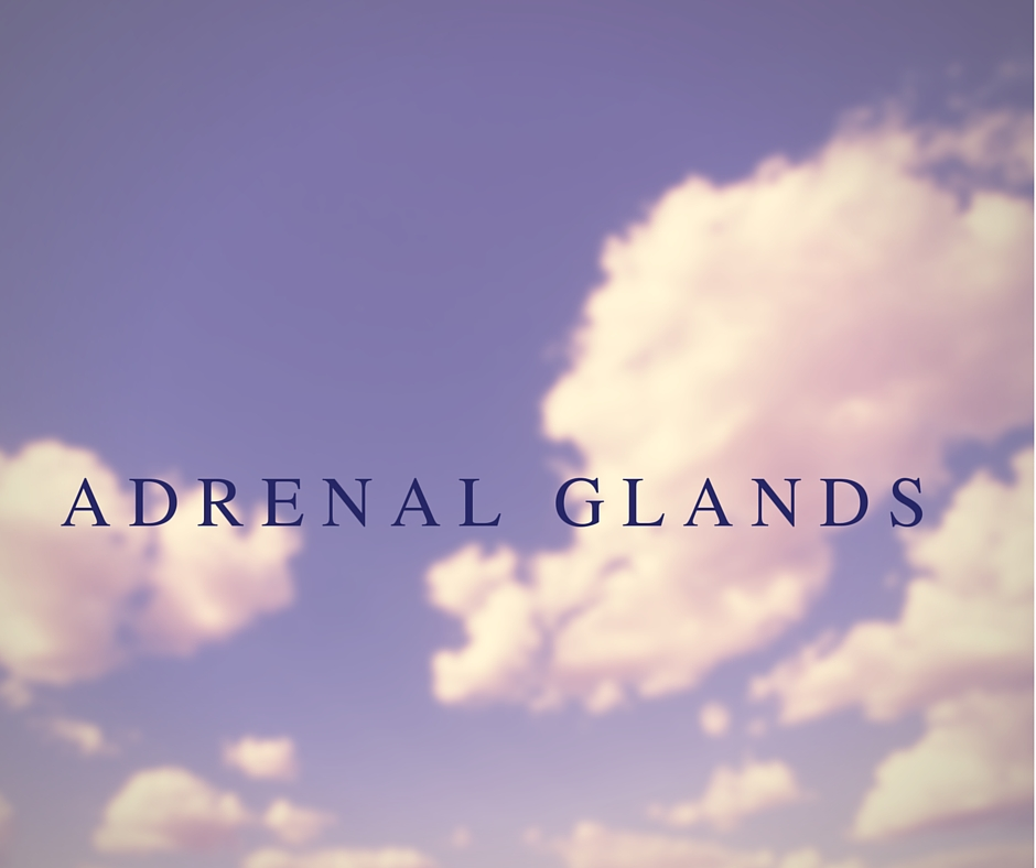 Adrenal Glands: A Common Factor in Stress and Fatigue